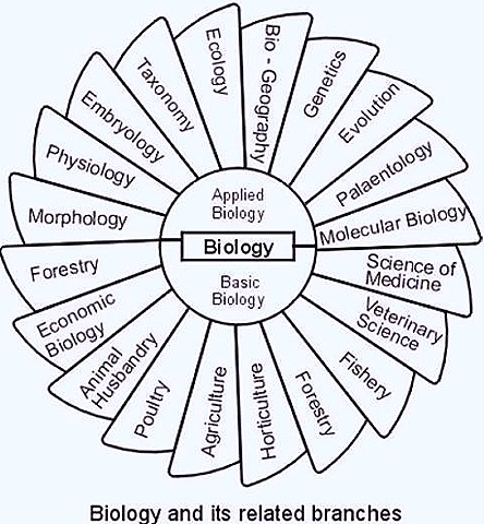 Biology what are some college subjects